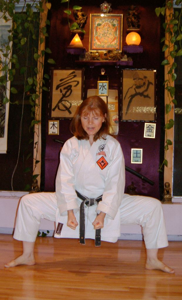 Sensei Mariani Bio Pic - Classical Martial Arts Centre - Toronto Central Region