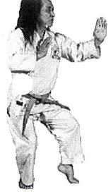 Sensei Yamaguchi Jan 1 (2) - Classical Martial Arts Centre - Toronto Central Region - Martial Arts classes offered in Toronto - Adults and Children - Karate-Do, Jiu Jitsu, Self-Defense, Tai Chi Chuan, Chi Gung, Ba Gwa, Iaido, Jodo, Kobudo, Ancient Weaponry, Kali.
