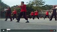 White crane training in the Shaolin temple