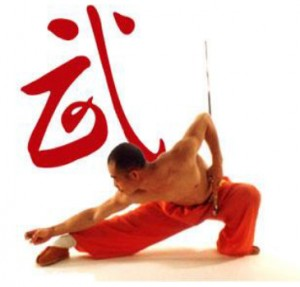 Wushu1 - Classical Martial Arts Centre - Toronto Central Region - Martial Arts classes offered in Toronto - Adults and Children - Karate-Do, Jiu Jitsu, Self-Defense, Tai Chi Chuan, Chi Gung, Ba Gwa, Iaido, Jodo, Kobudo, Ancient Weaponry, Kali.